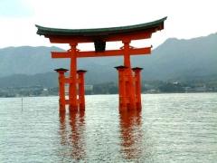 fukushima, japon, apocalypse, libye, patti smith, bloc note express