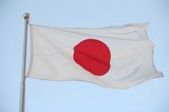 japon,tsunami,écolos,compassion,bloc-note express